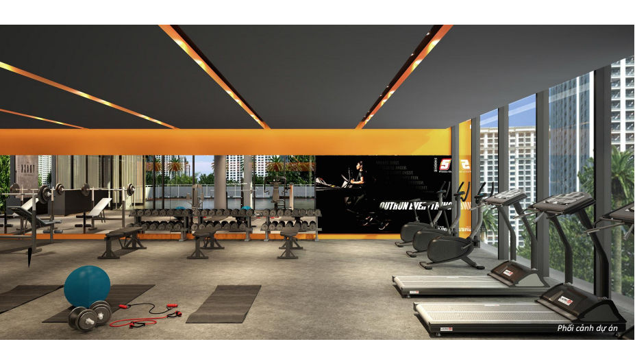 phong tap gym can ho palm heights